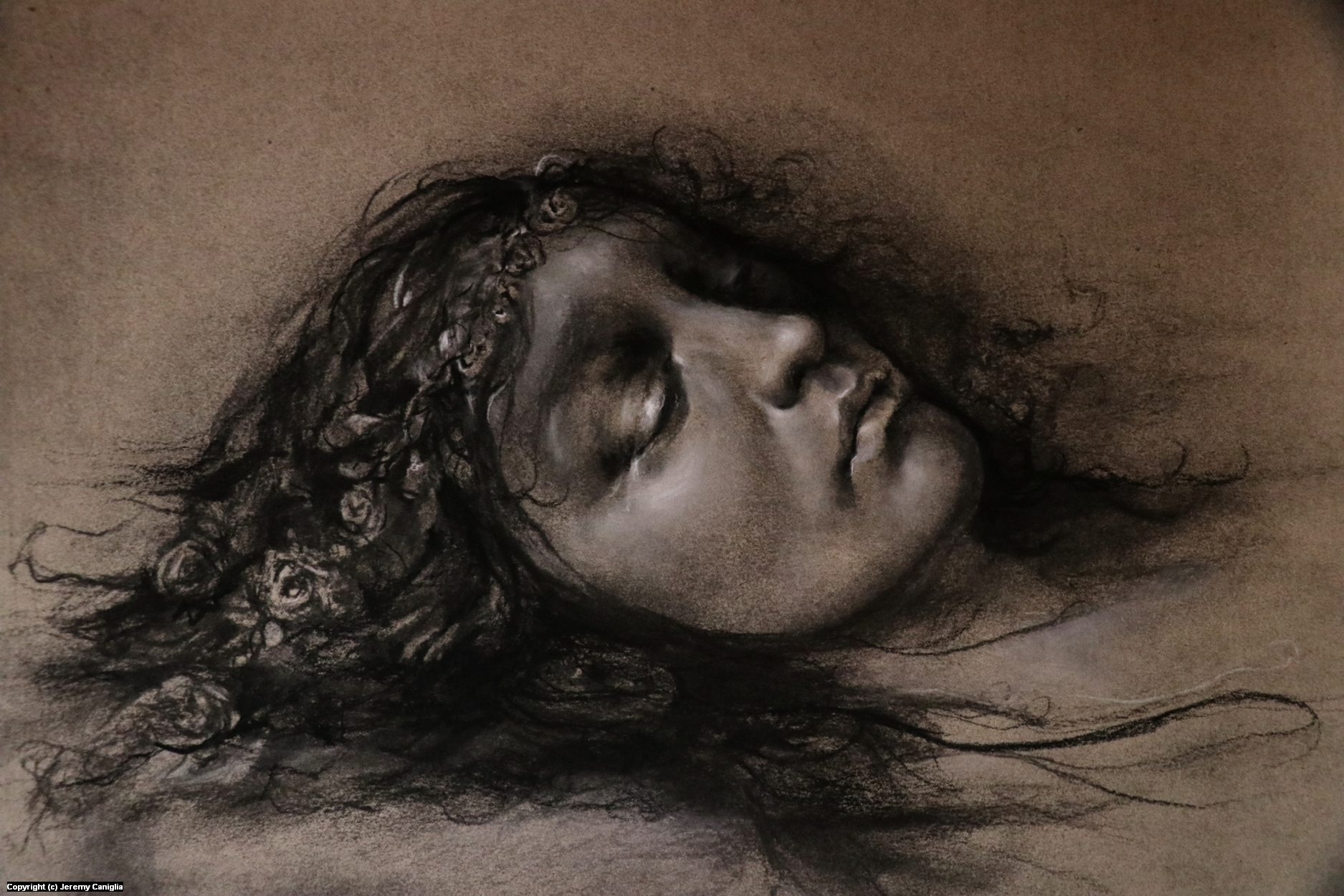 Ophelia, Floating Behind the Veils of a Silent Spring Artwork by Jeremy  Caniglia