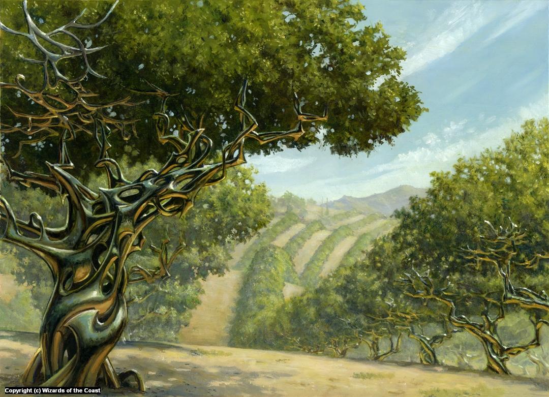 Exotic Orchard Artwork by Steven Belledin