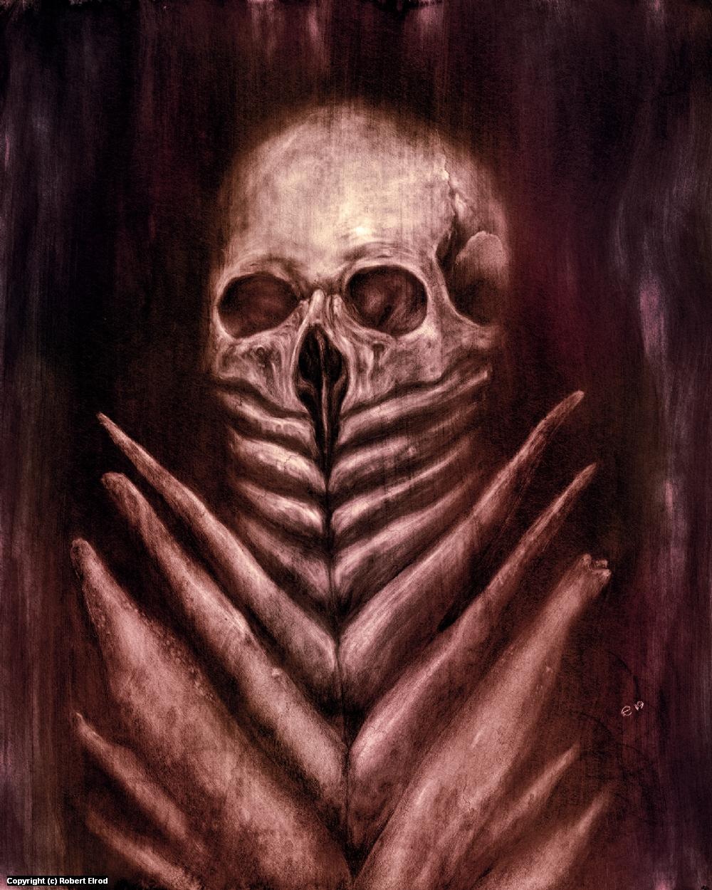 Bone Lotus Artwork by Robert Elrod