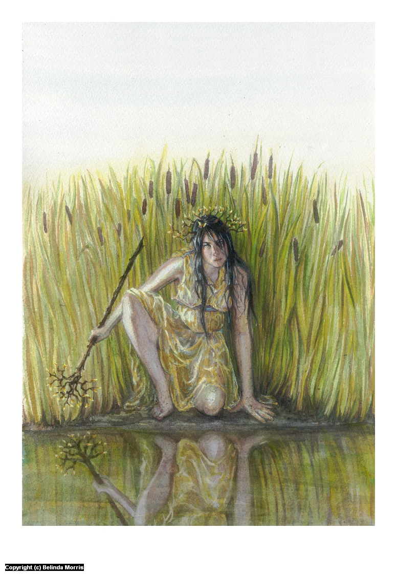 The Water Thief Artwork by Belinda Morris