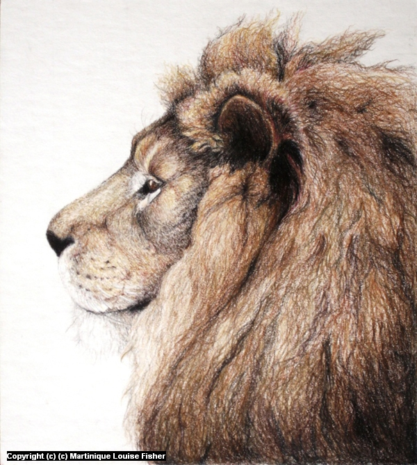 Leo Artwork by Martinique Fisher