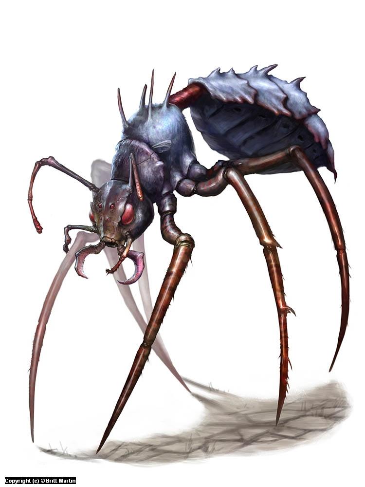 Stilt Bug Artwork by Britt Martin