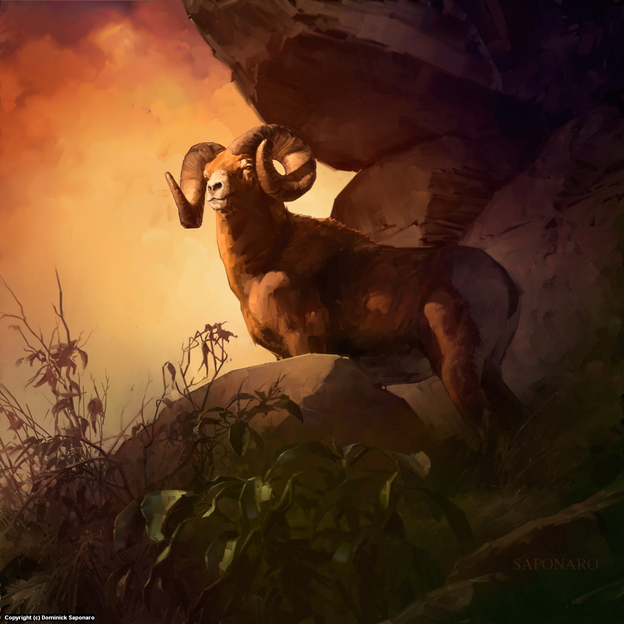 Bighorn Artwork by Dominick Saponaro