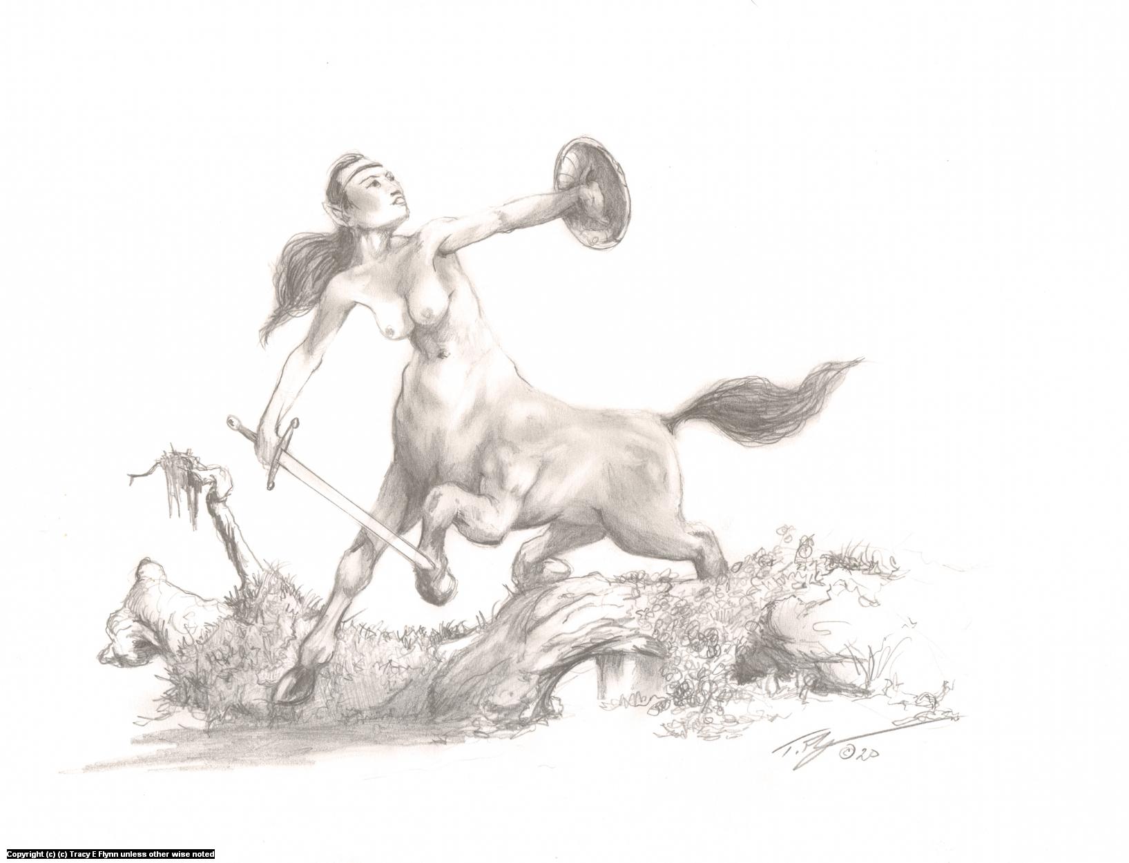 Female Centaur Artwork by Tracy E Flynn
