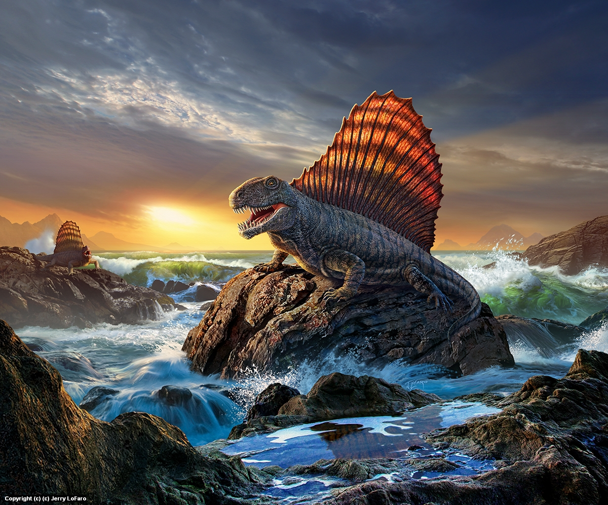 Dimetrodon Artwork by jerry lofaro