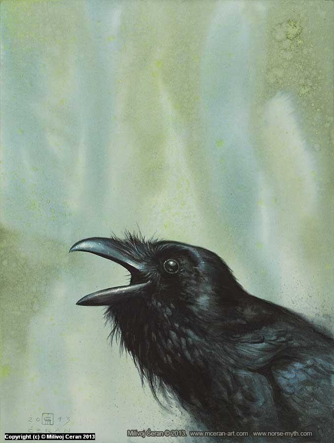Corvus Corax Artwork by Milivoj Ceran