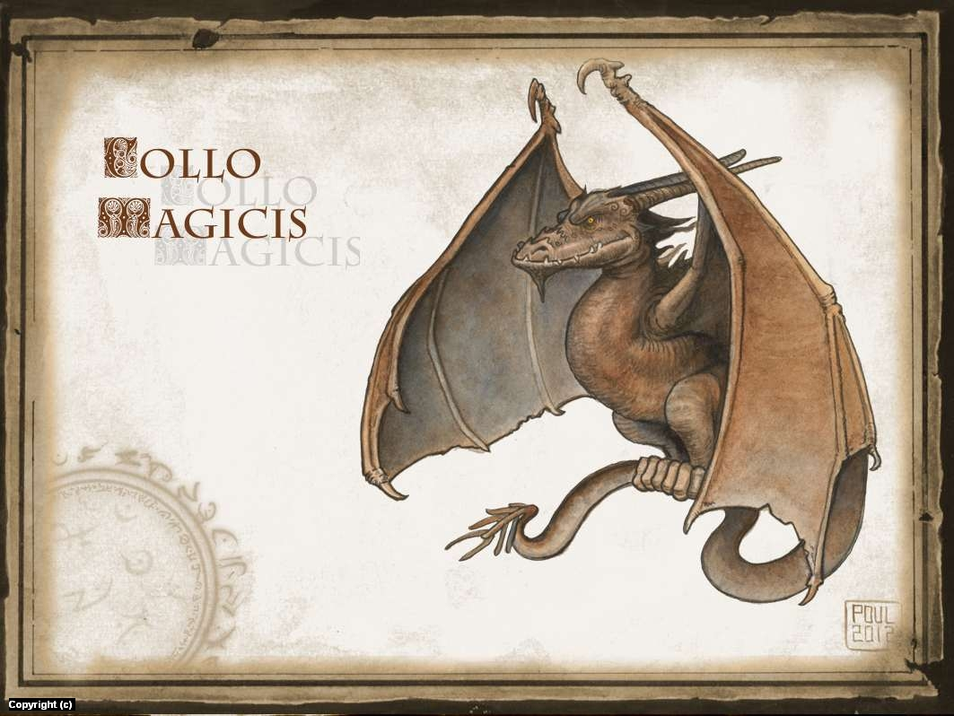 Collo Magicis Artwork by Poul Dohle