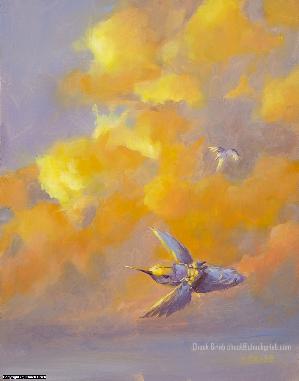 Hummingbird Clouds Artwork by Chuck Grieb