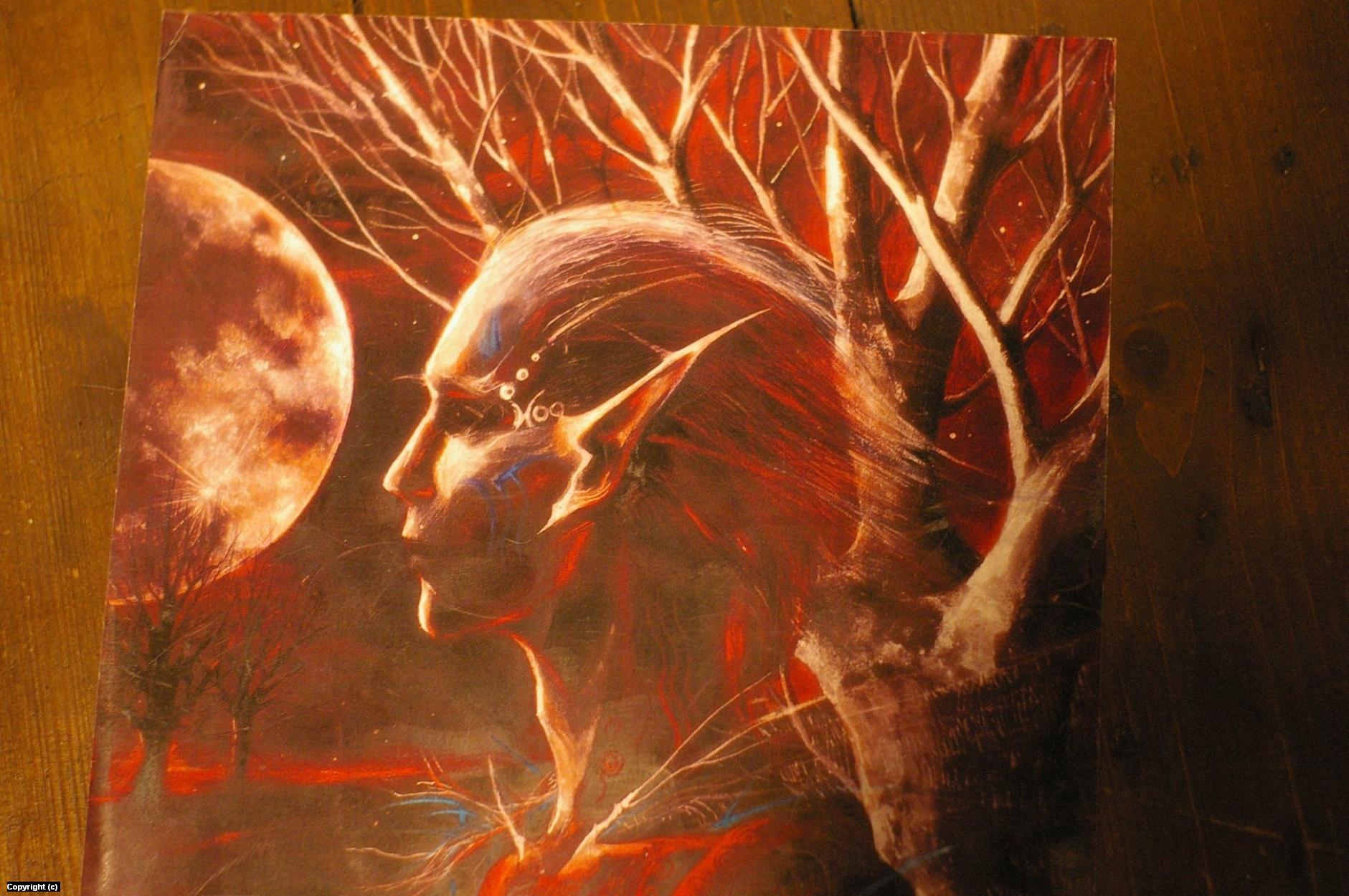 Midnight 1 Artwork by Freda Lodni