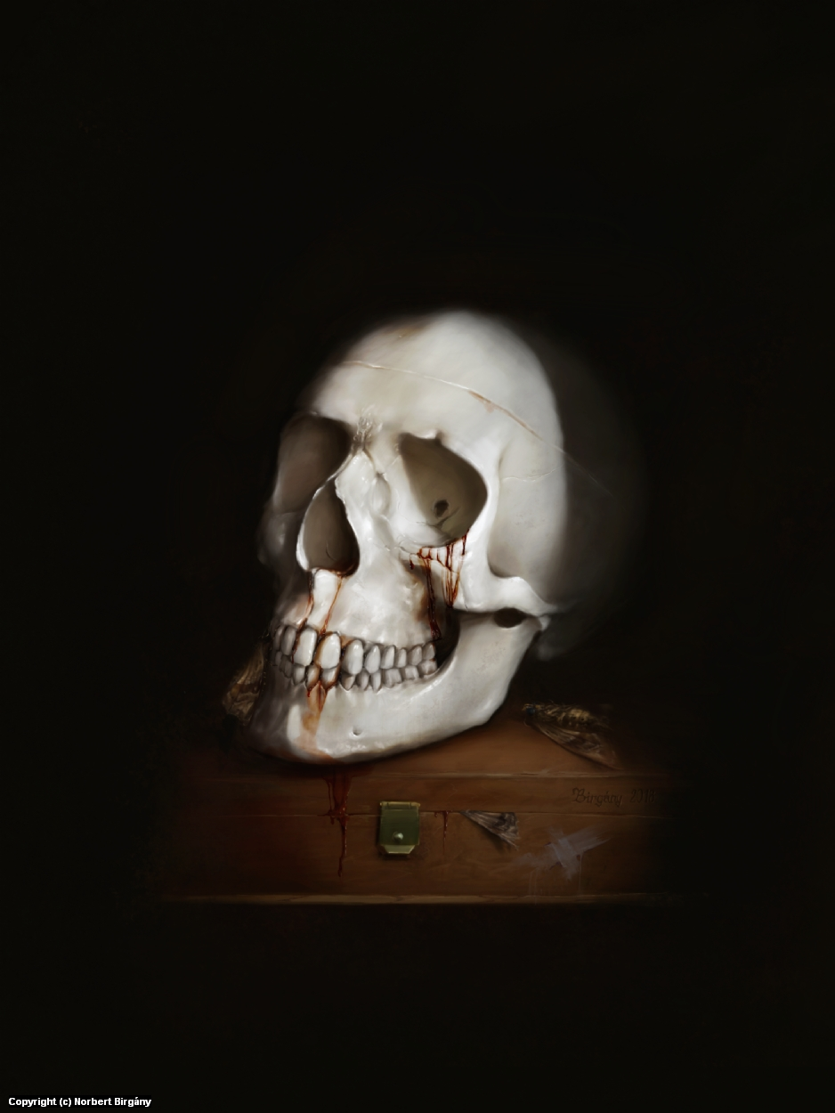 Still life with skull Artwork by Norbert Birgány