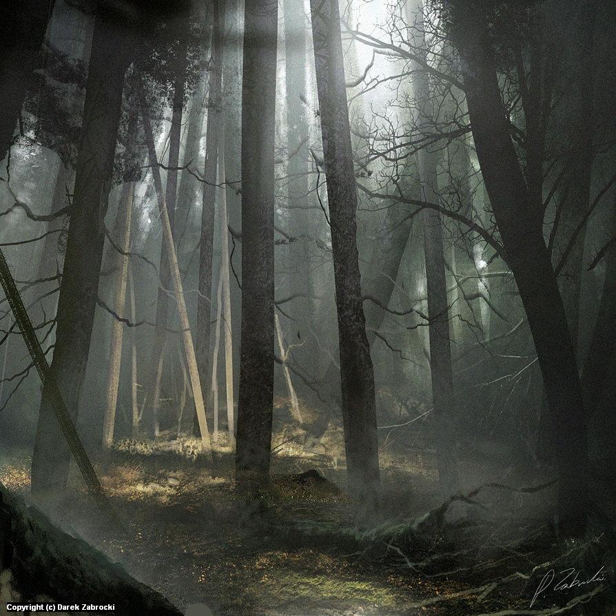 Mist Forest Artwork by Darek Zabrocki