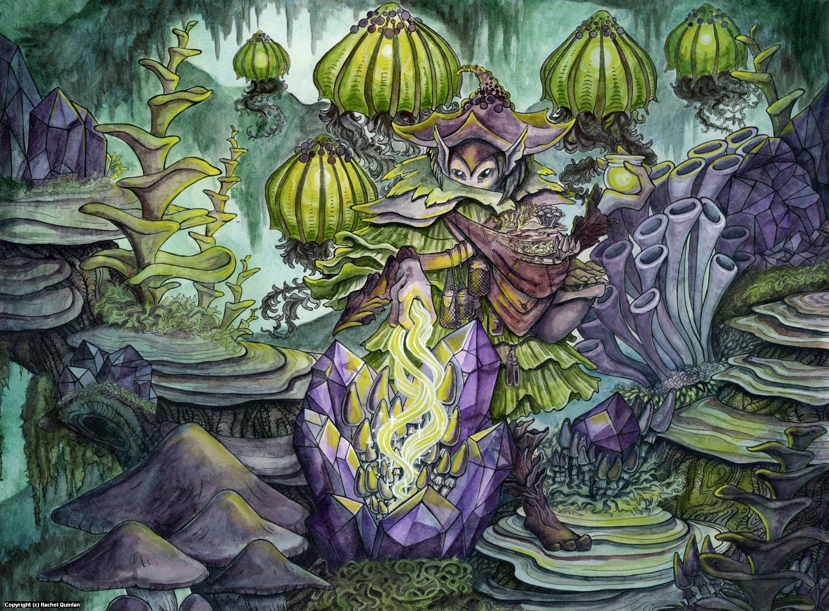 New Growth Artwork by Rachel Quinlan
