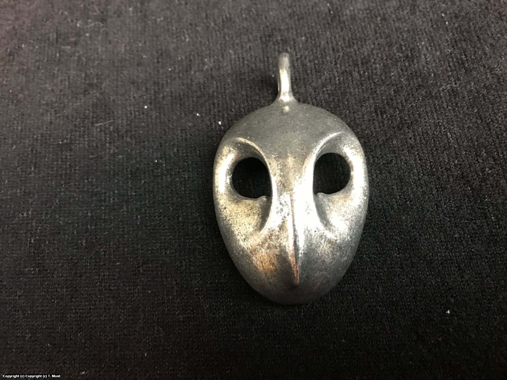 Court of Owls Pendant Artwork by Thomas Most