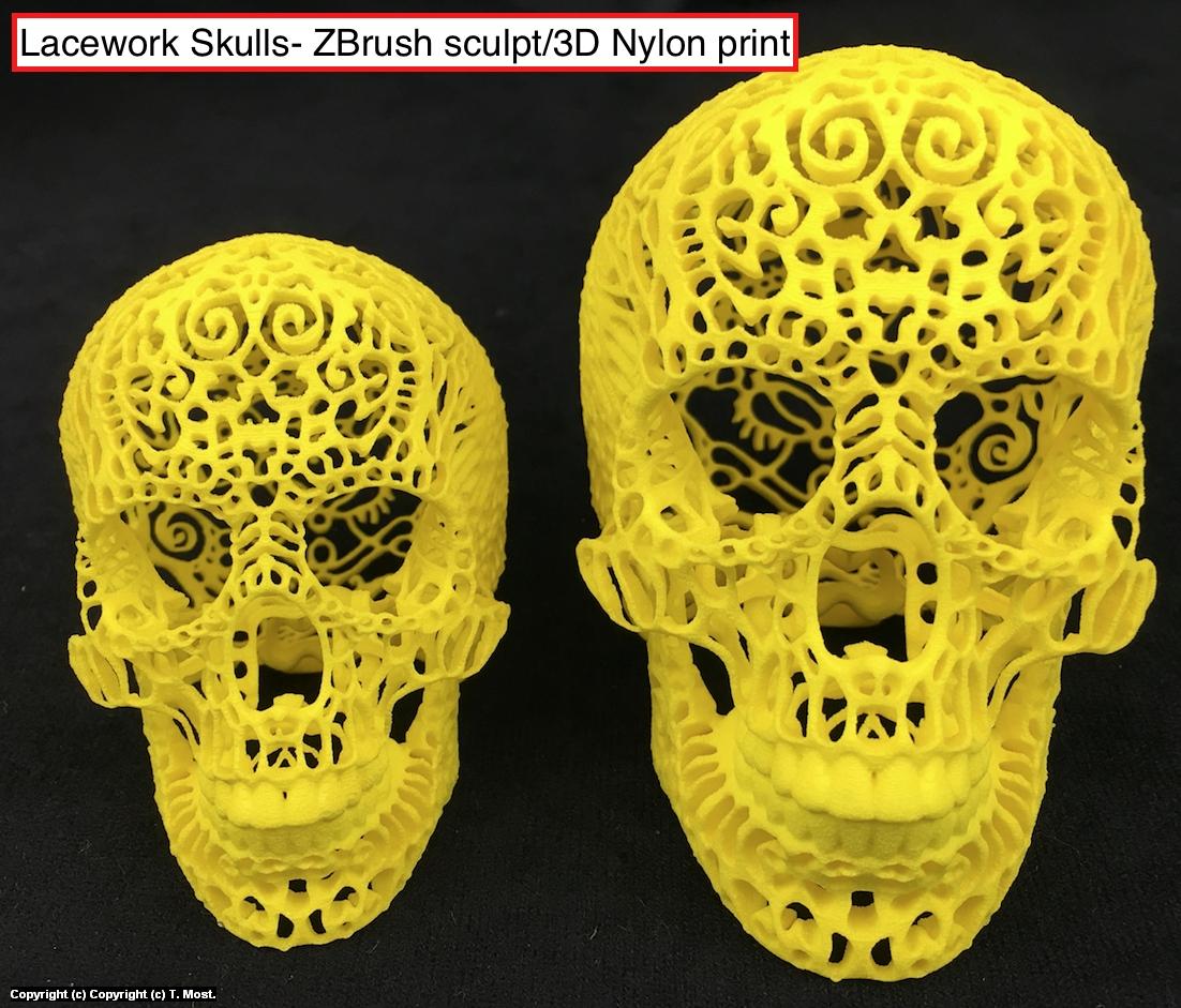 3D Printed Skulls Artwork by Thomas Most