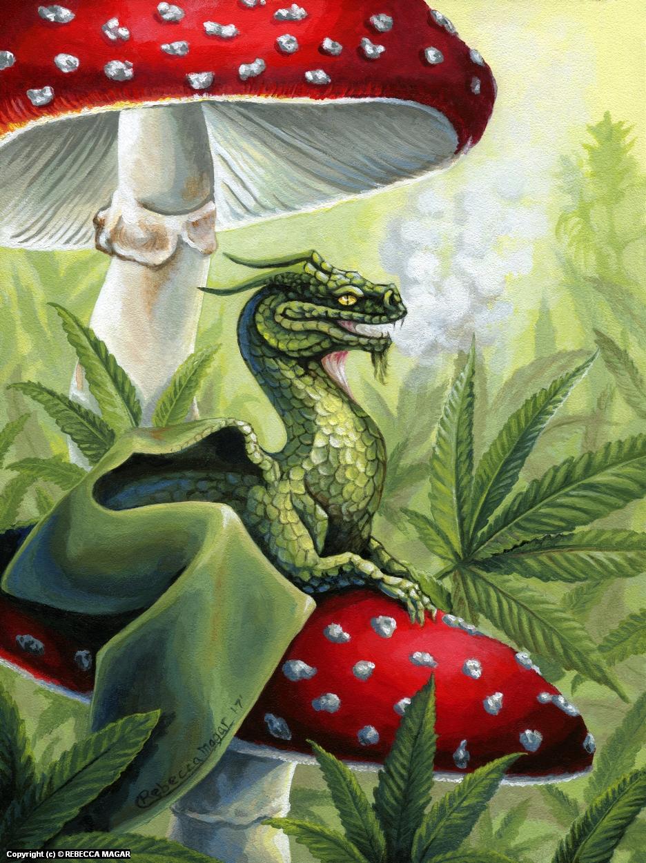 Green Dragon Artwork by Rebecca Magar