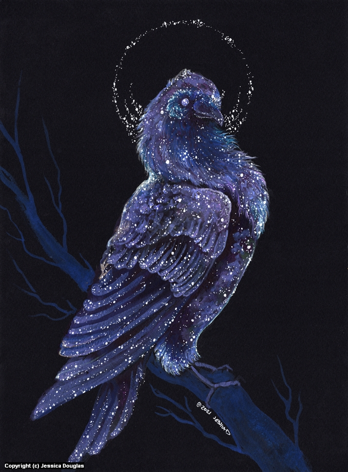 The Raven Of Ill Omens Artwork by Jessica Douglas