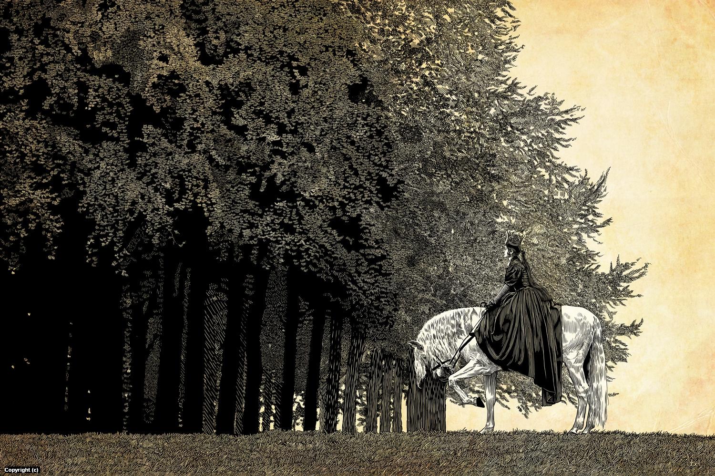 princess on horseback Artwork by Douglas Bell