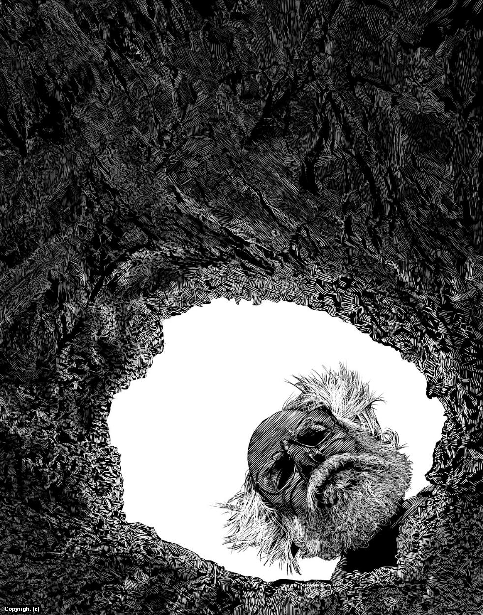 Mel's Hole Artwork by Douglas Bell