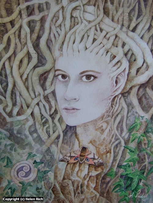 Dryad Moth Maiden Artwork by Helen Frost Rich