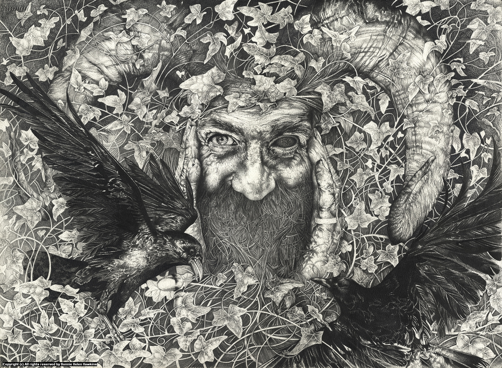 Odin Artwork by Bonnie Helen Hawkins