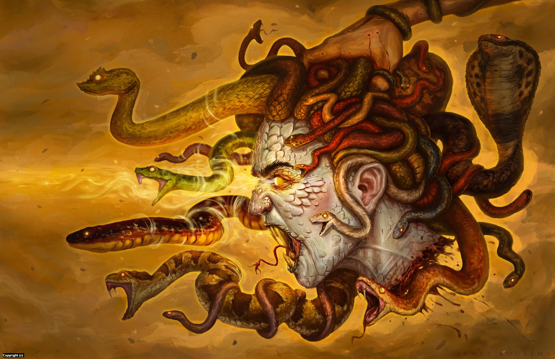 Medusa Artwork by James Bousema