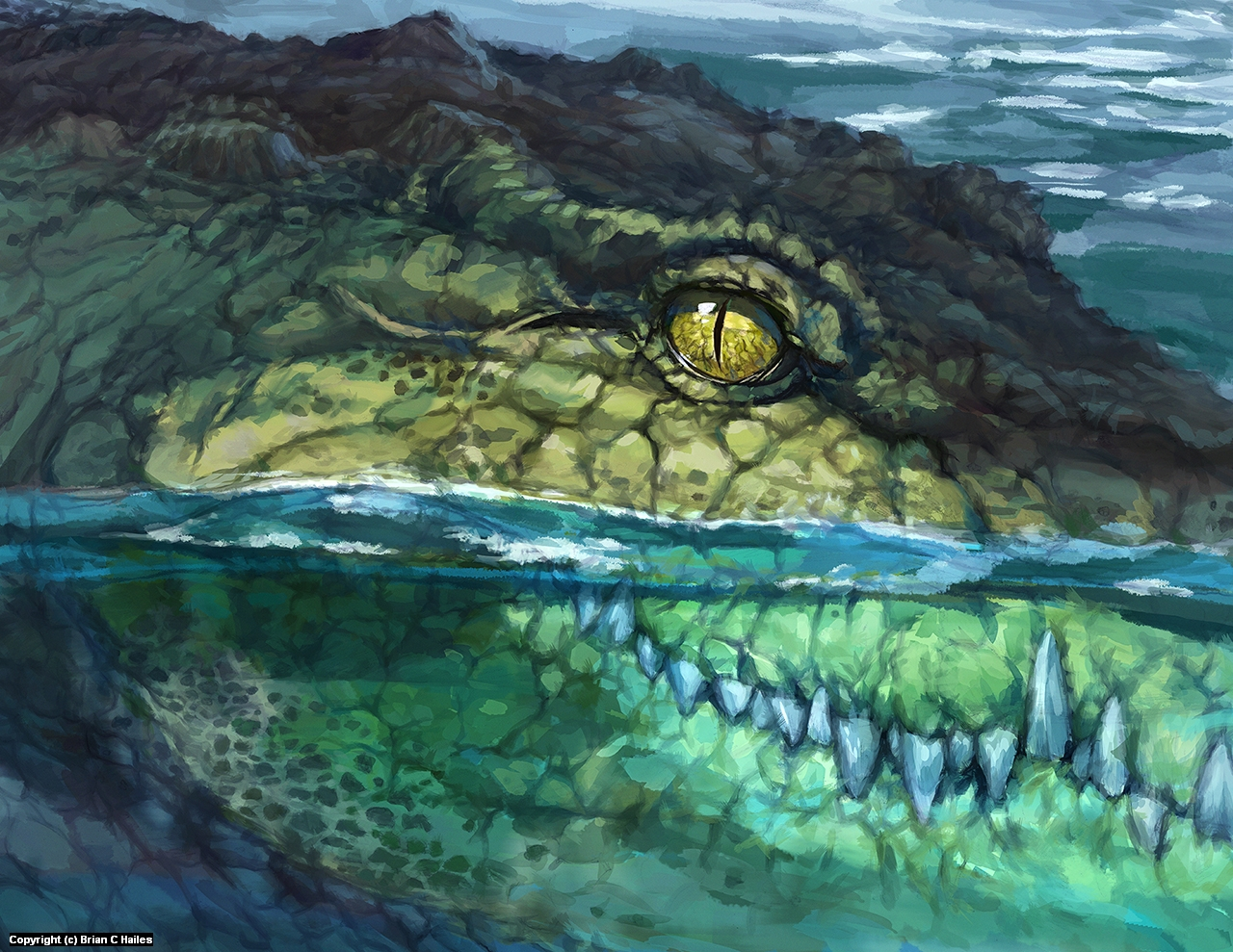 Don't Go Near the Crocodile Ponds Artwork by Brian C Hailes