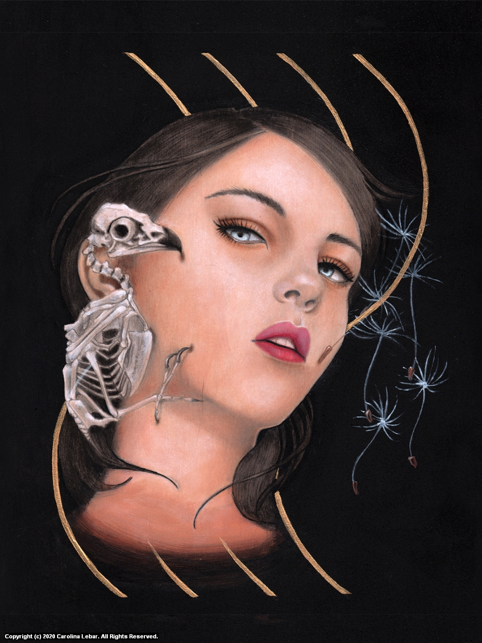 Aloft - Air Artwork by Carolina Lebar