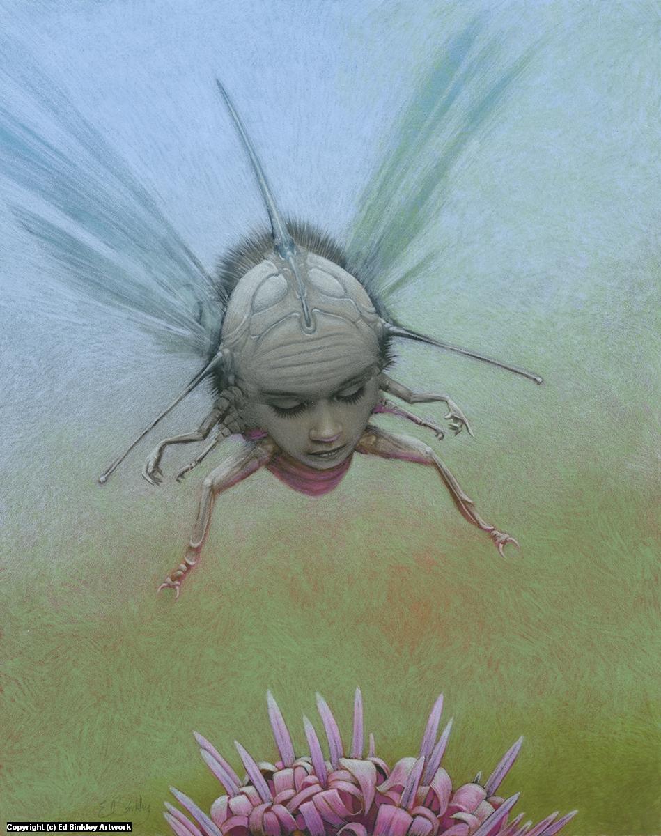 Ladybug  Artwork by Ed Binkley