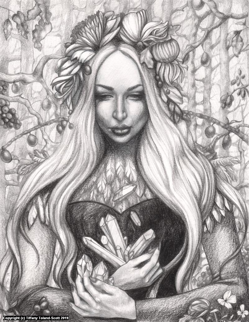Gems of Winter - Drawing Artwork by Tiffany Toland-Scott