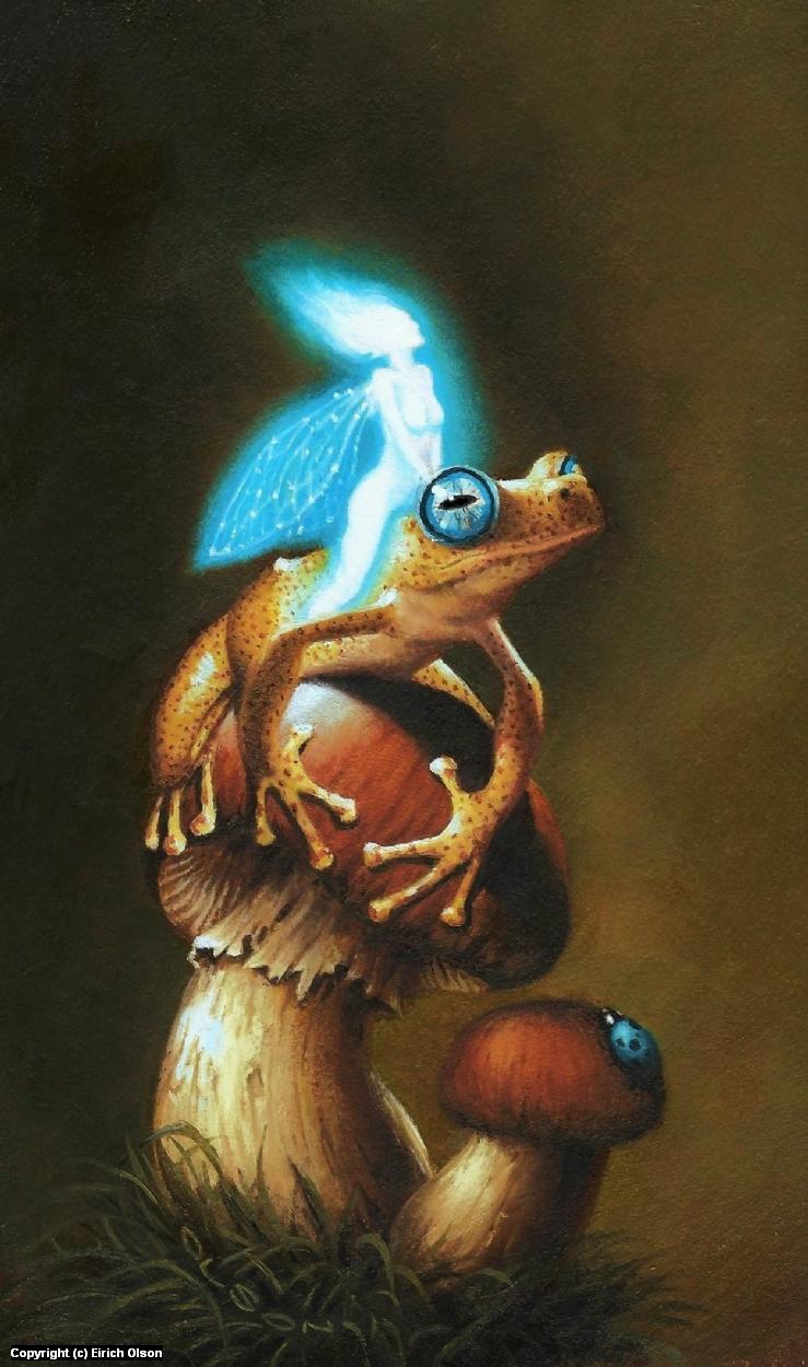 Faerie & Frog Artwork by Eirich  Olson