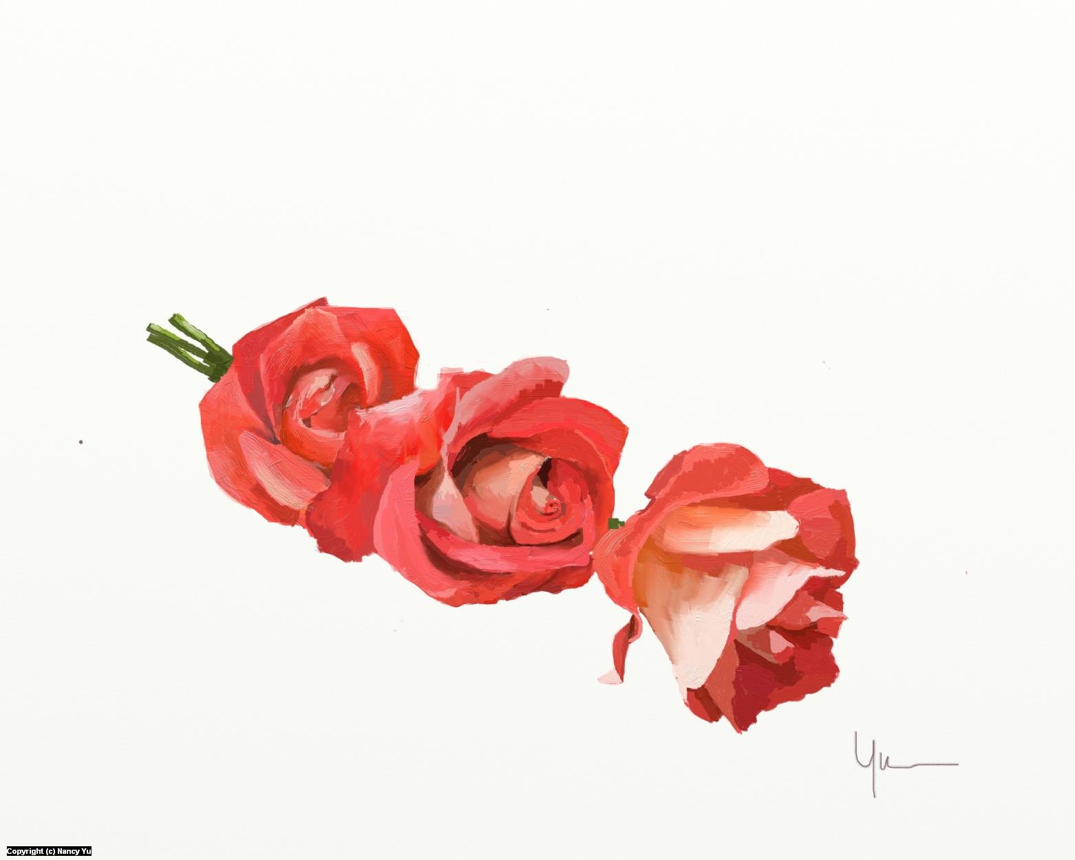 Day 29 Rose Artwork by Nancy Yu