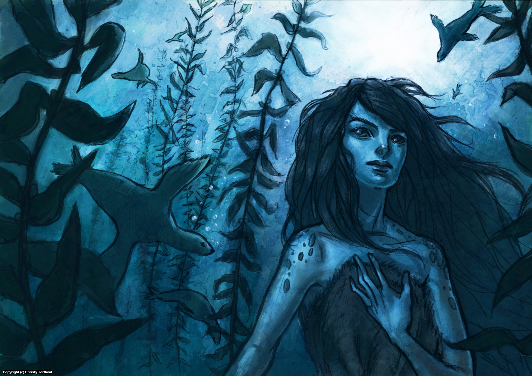 The Selkie Artwork by Christy Tortland
