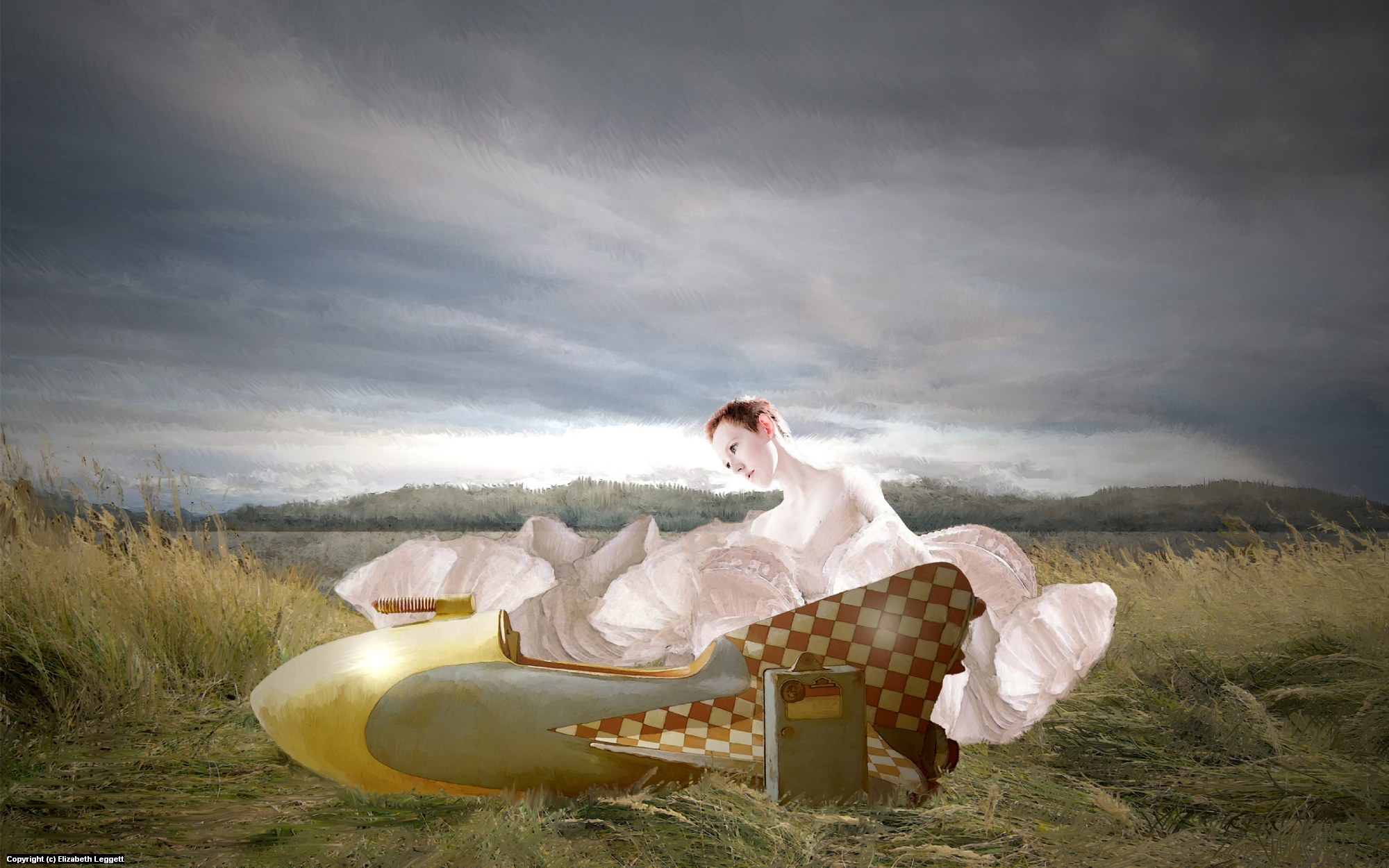 Amelia Forgot Her Wings  Artwork by Elizabeth Leggett