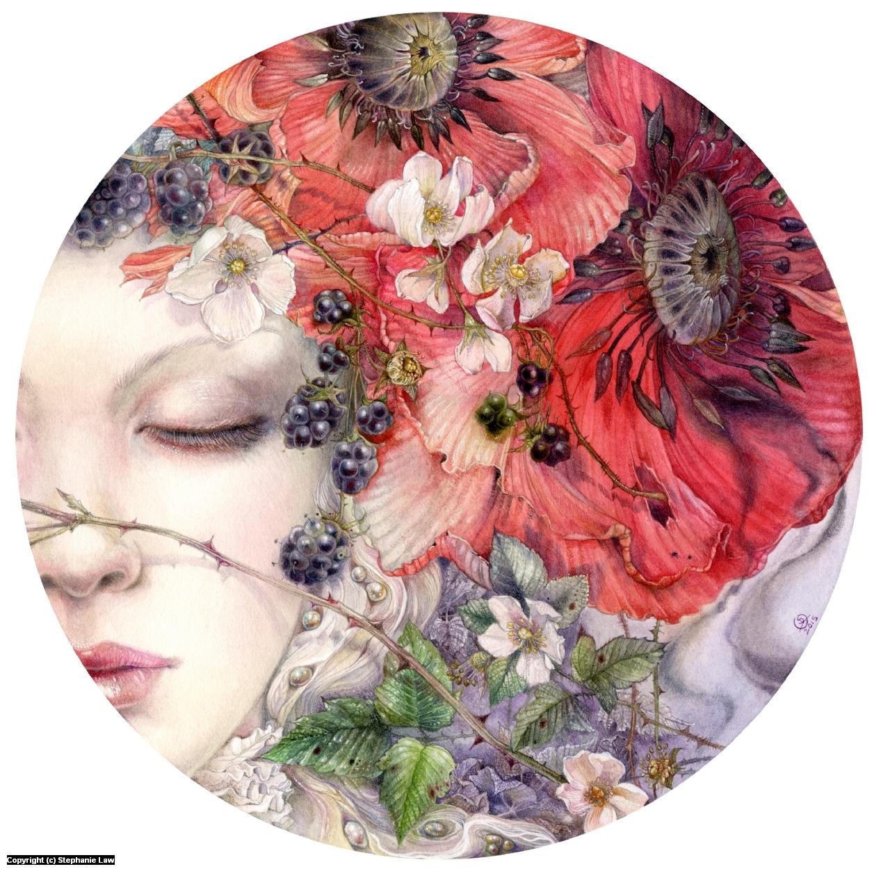 She Sleeps Artwork by Stephanie Law