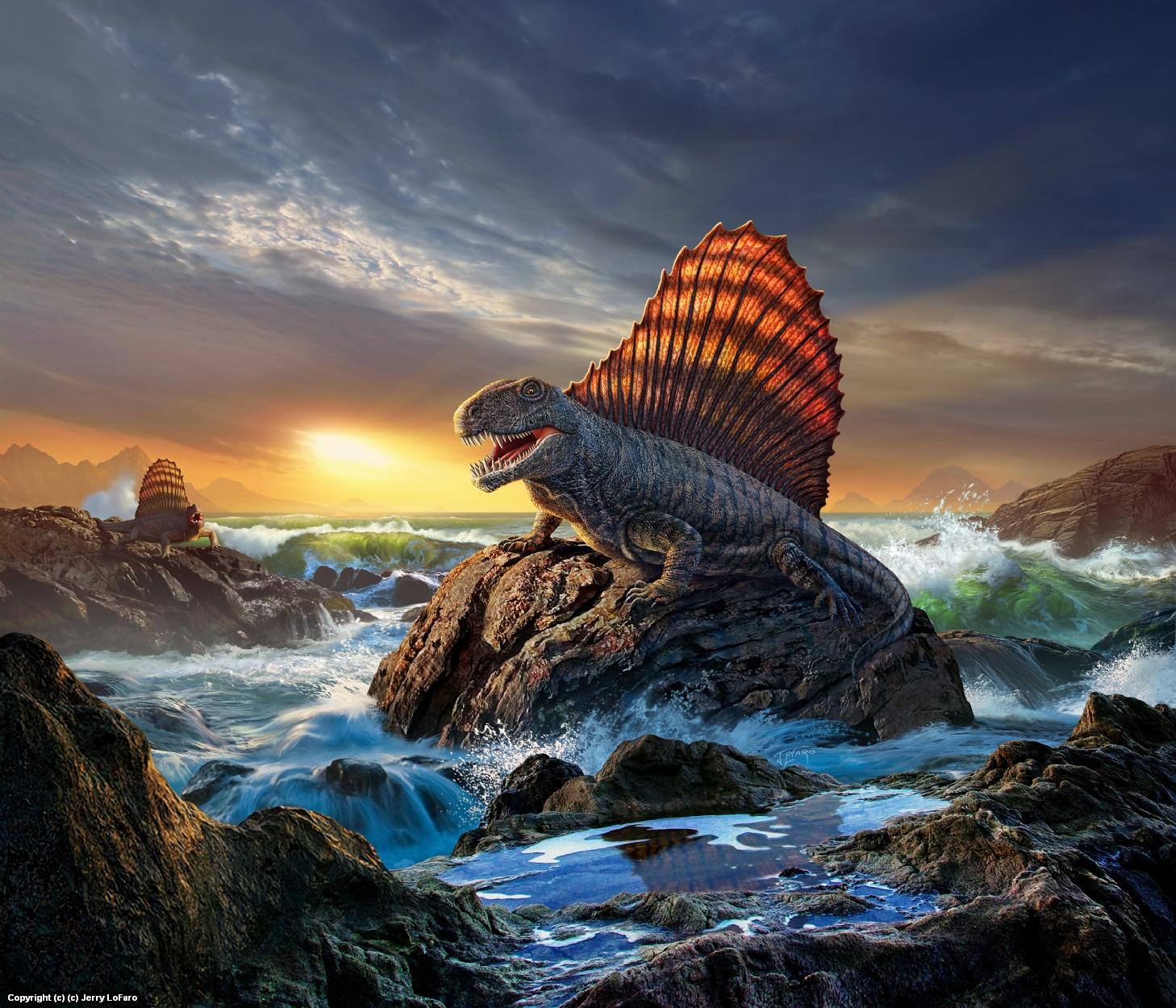 Dimetrodon Artwork by jerry lofaro