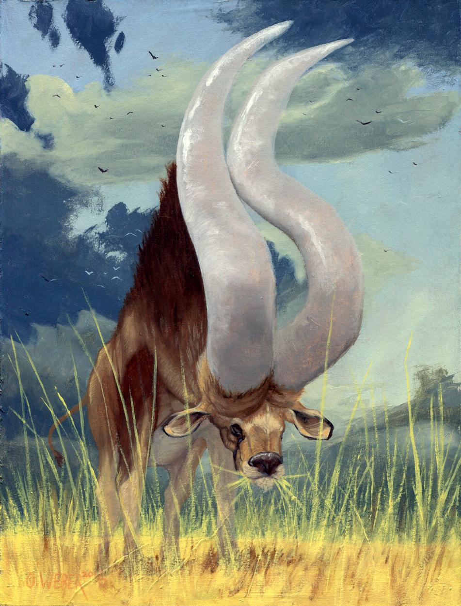 African Grand Horn Artwork by Owen Weber