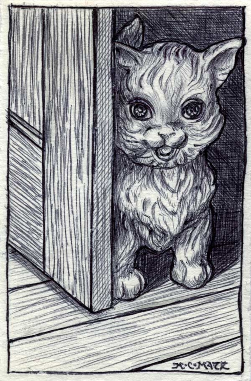 Cat Toy Artwork by M. C. Matz