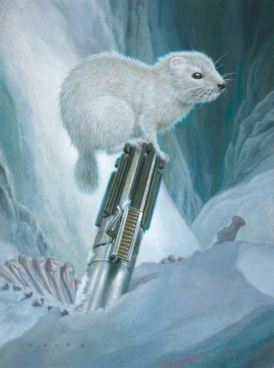 Frosted Polecat Artwork by Allen Douglas