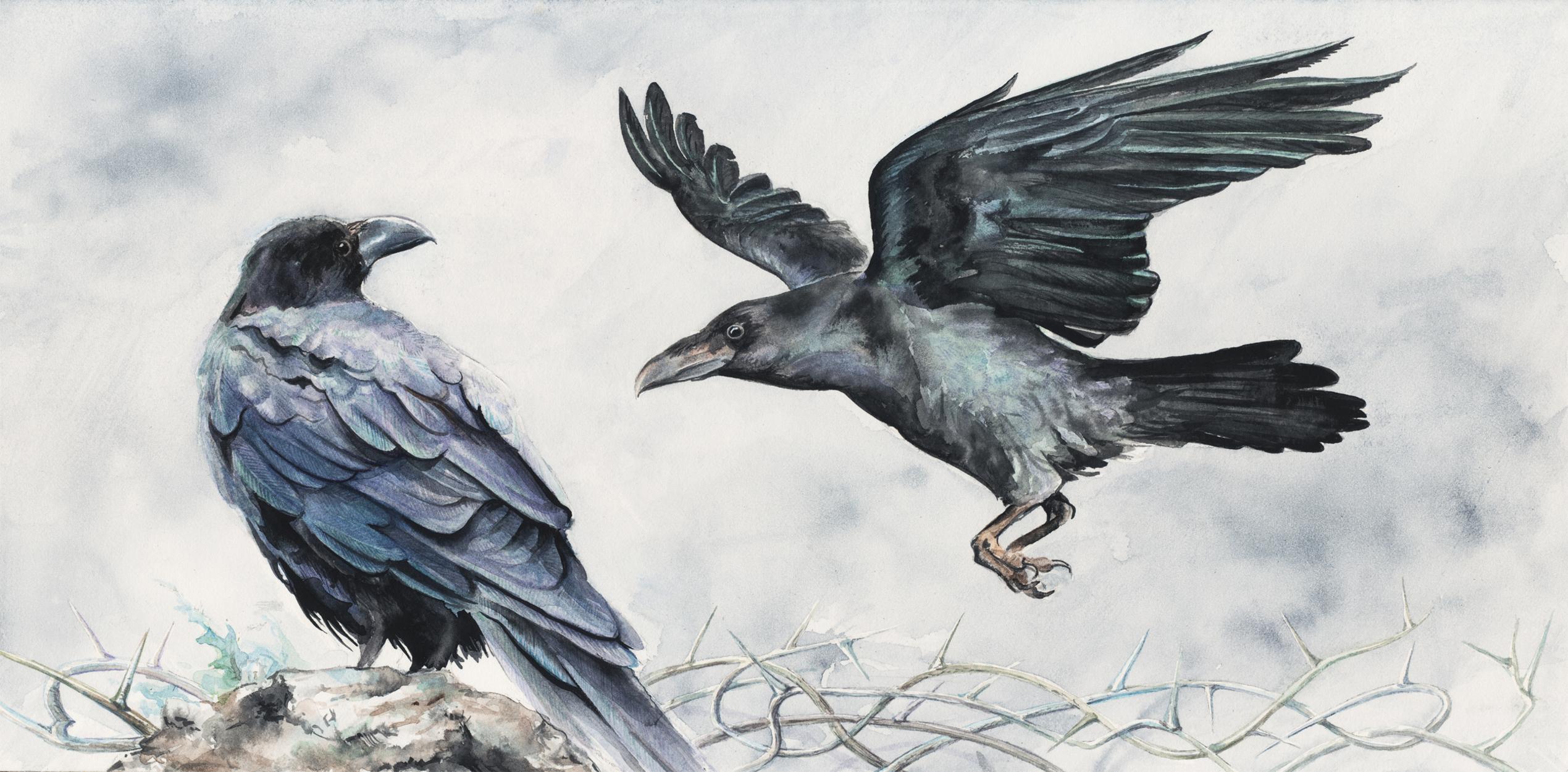 Huginn and Muninn Artwork by Mariya Prytula