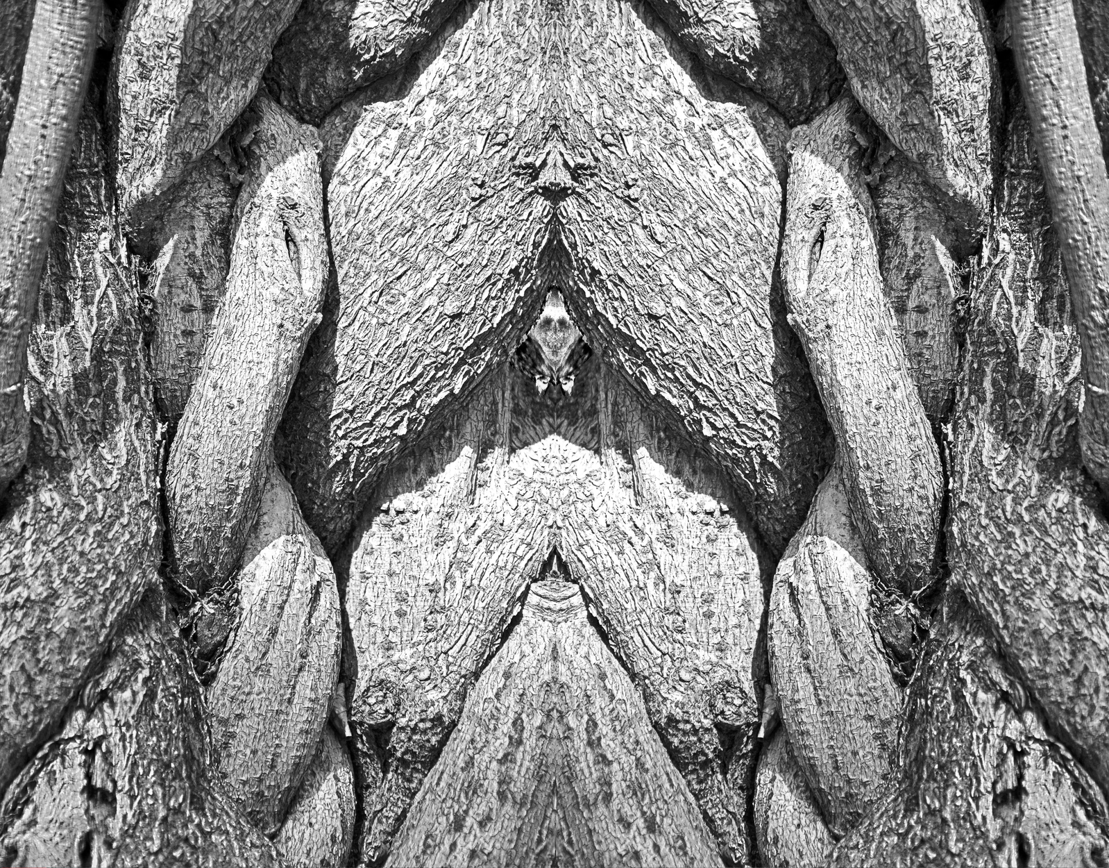 Watcher-Noir Artwork by Leslie Jordan