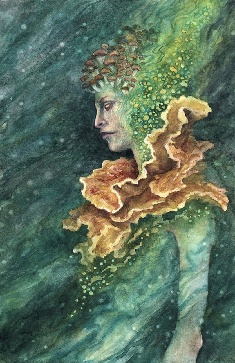 Fungi  Artwork by iris compiet