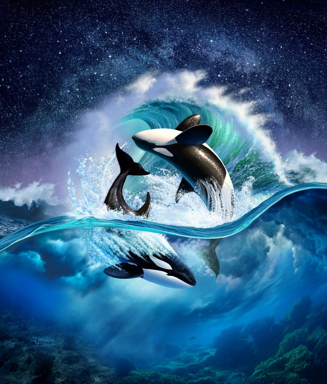 Orca Wave Artwork by jerry lofaro