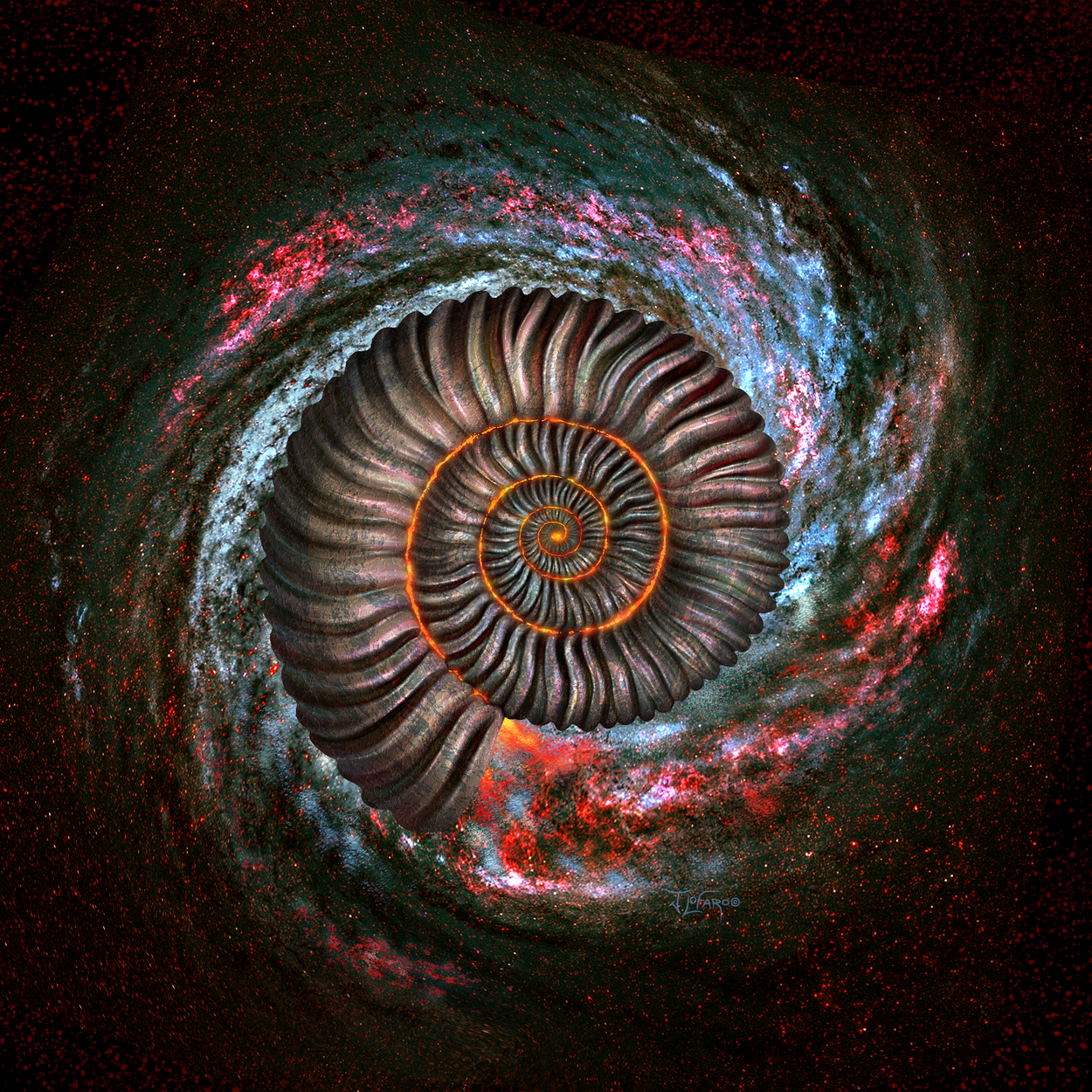 Ammonite Galaxy Artwork by jerry lofaro