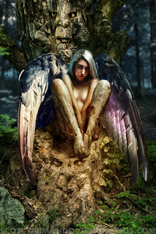Harpie Artwork by Scott Grimando