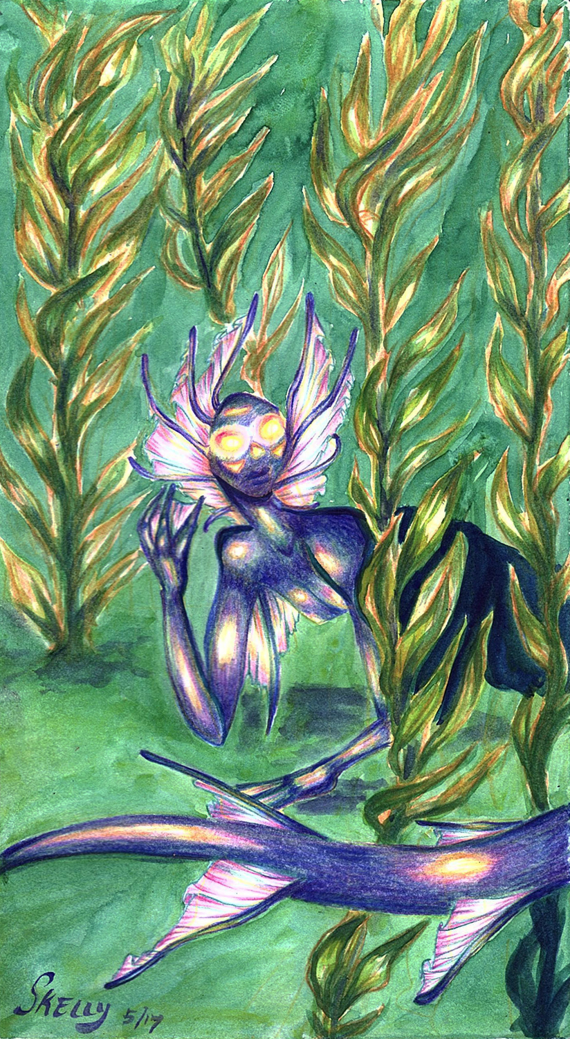 Among the (sea)weeds Artwork by Christine Skelly