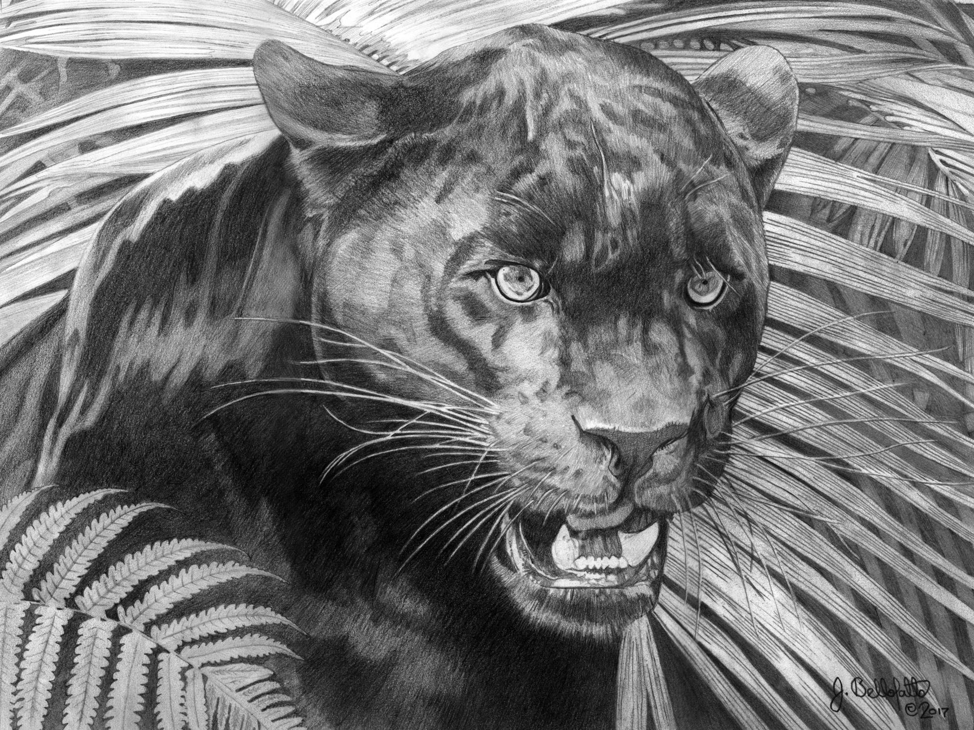 Dark Hunter Artwork by Joseph Bellofatto