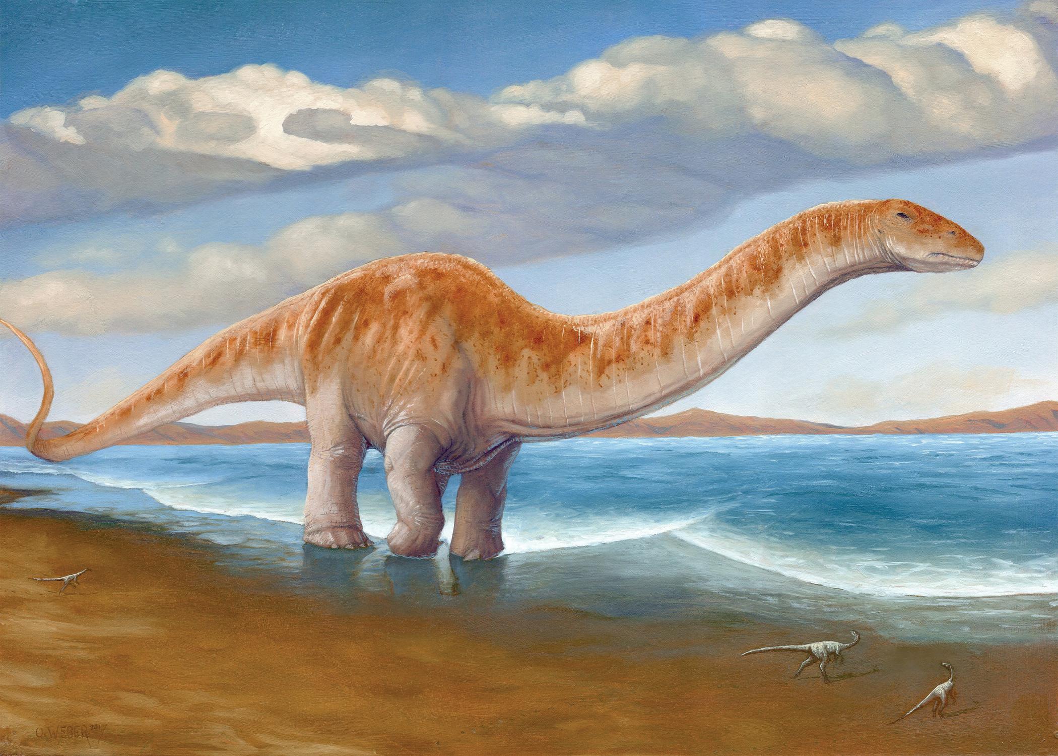 Apatosaurus Artwork by Owen Weber