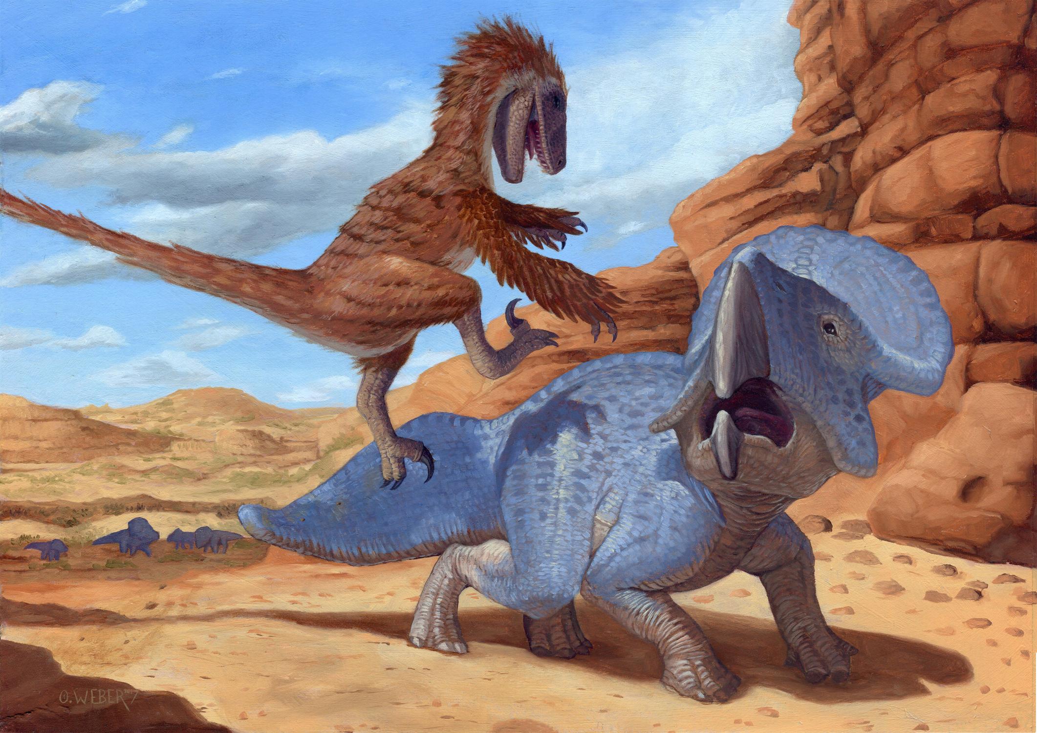Fighting Dinosaurs Artwork by Owen Weber