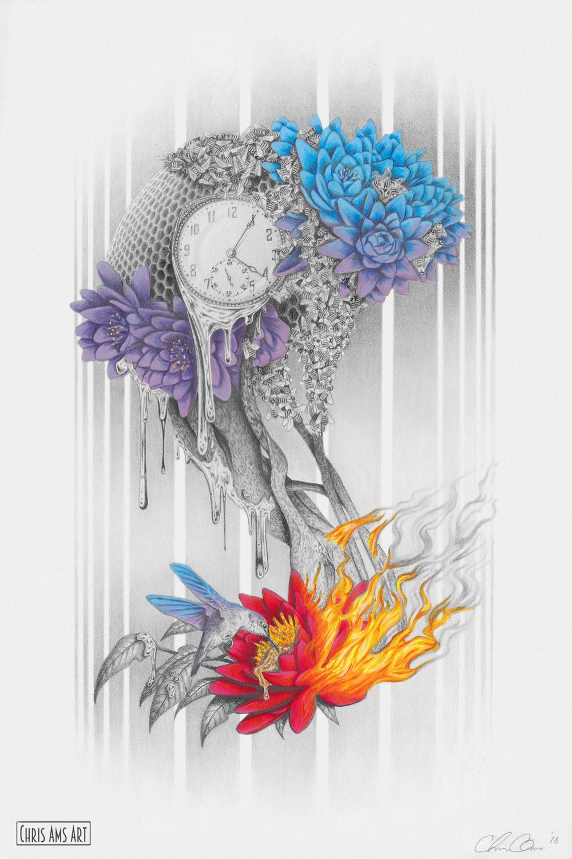 Brain Artwork by Chris  Ams