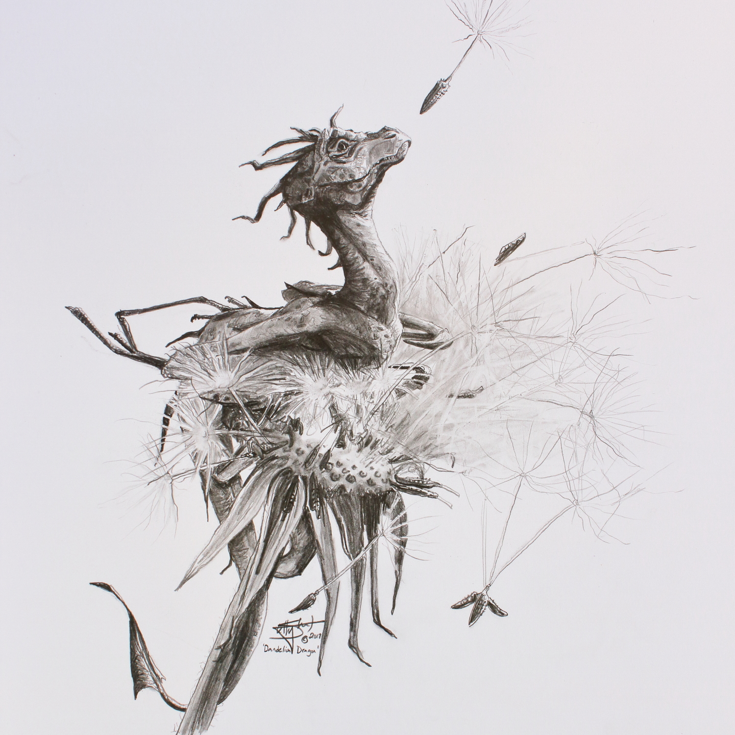 Dragon Dandelion Artwork by Shelly Campbell
